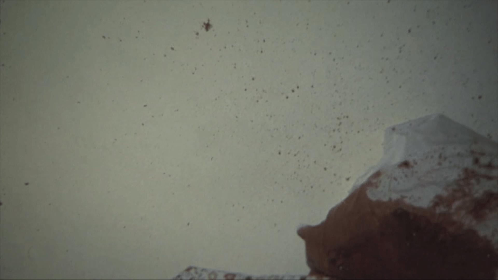 Blood splatter from Bob Crane's murder scene.